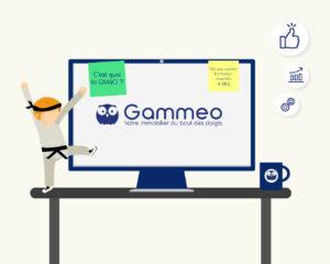 c'est quoi la GMAO ?